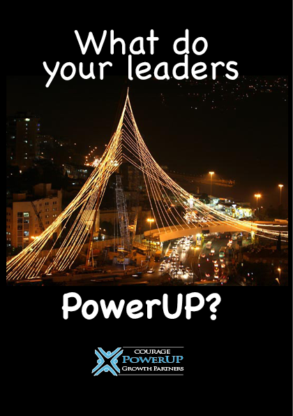 Download What do your leaders PowerUP brochure