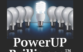 Power Up Brilliance book cover